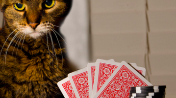 devenir meilleur au poker