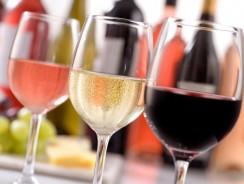 La cave des meilleurs vins bio